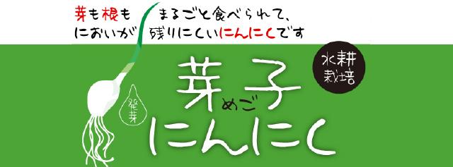 mego_top